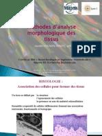 Cours Histologie Et Immunohistochimie