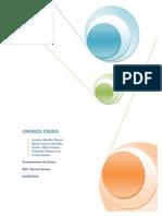47482893 Proyecto Final Chorizo