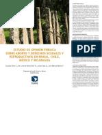 Estudio Sobre Aborto America Latina 2011
