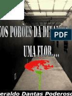 Nos Poroes Da Ditadura Uma Flor