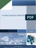 Profil Judetul Harghita_actualizat
