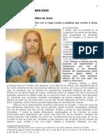 518 en Jerusalén, Encuentro Con El Ciego Curado y Palabras Que Revelan a Jesús Como Buen Pastor
