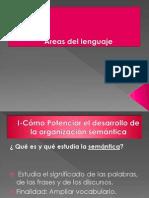 Areas Del Lenguaje