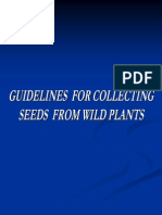 Guidelines for Collecting Seeds From Wild Plants
