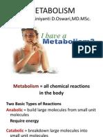 Metabolisme Edited