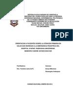Atencion Primaria en Salud I,II,III