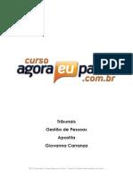 gestão_de_pessoas.pdf