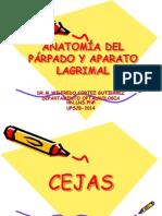 Anatomía Del Párpado y Aparato Lagrimal.dr.Cortez.