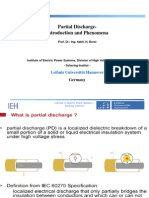 9_Borsi_PD_ Intro and phenomena.pdf
