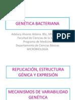 4. Replicación, gen y expresión Genetica Parte I estudiantes.pdf