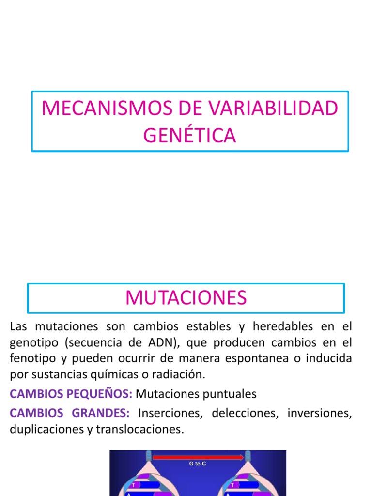 4. Variabilidad Genetica.pdf