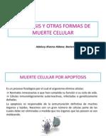 7.6 APOPTOSIS ESTUDIANTES.pdf
