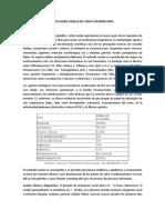 INFECCIONES VIRALES DEL TRACTO RESPIRATORIO estudiantes.pdf