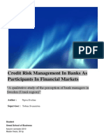 Credit Risk Management in Banks