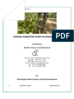 CG_Cashew Subsector Study Report by HVR_2