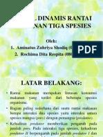 Model Dinamis Rantai Makanan Tiga Spesies