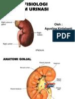 Patofisiologi Sistem Urinasi