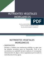 NUTRIENTES VEGETALES INORGANICOS