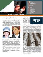 arabspringarticle