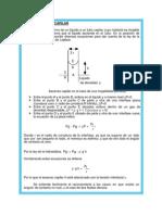 METODO DEL TUBO CAPILAR.docx