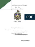 Universidad Nacional Autónoma de Nicaragua UNAN