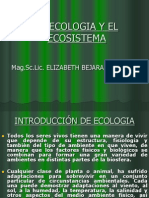 La Ecologia y El Ecosistema (1)