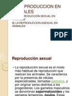 LA REPRODUCCION Sexual y Asexual 1er Cap