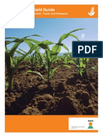 KWS Maize Field Guide - Maize Crop Development, Pests and Diseases