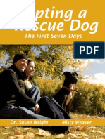 Adopting Rescue Dog