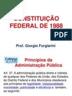 Constituicao Federal GARRA
