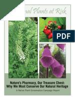 Medicinal Plants 042008 Lores