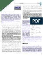 b3-Campos Magneticos Dinamicos_h