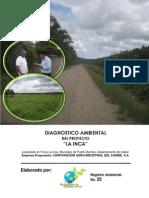 Diagnostico Ambiental_La_Inca (Palma Africana)