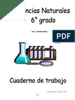 guia c.n. 6