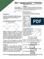 Fisica 2014-06 Dinámica Circular