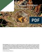 Guia Version 2 ISBN