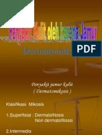 Slide Kuliah Peny Kulit Ok Jamur