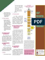 Graft Prevention Program Primer