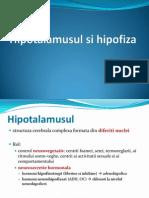 Hipofiza