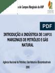 Campos Marginais (2)