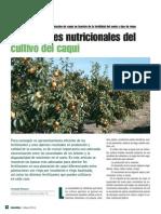 Cultivos Caqui VR375