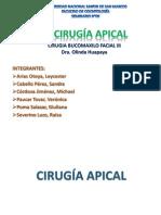 CIRUGÍA APICAL