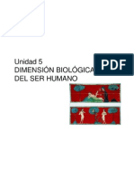 Tema 5 Dimension Biologica Del Ser Humano