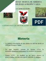 CAFICULTURA 1