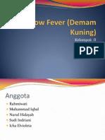 Yellow Fever (Demam Kuning), Kel 2 Klas A