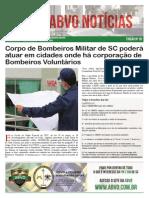 ABVO Notícias nr 020 - Mês 04-2014.pdf