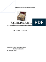 Plan de Afaceri-bijuterii