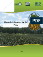 Manual de Produccion de Pina