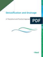 Detox Drainage