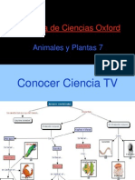 animales y plantas. Conocer Ciencia tV